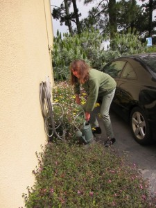 5-30-15 Catherine Work Day